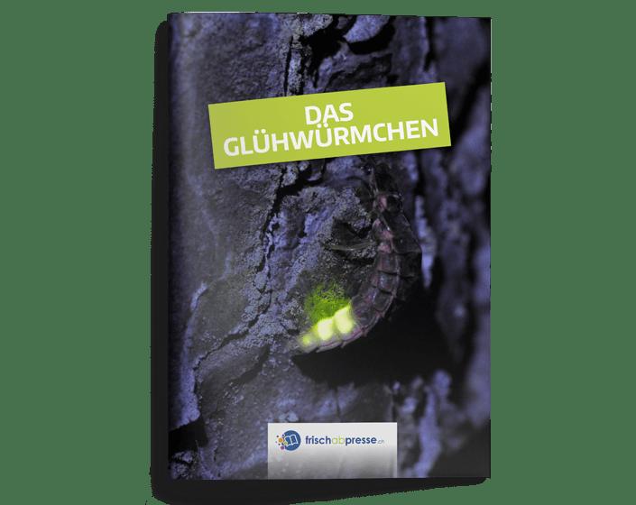 Gluhwurmchen190220Titel